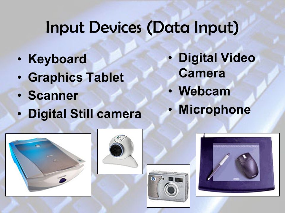 Input Devices (Data Input)