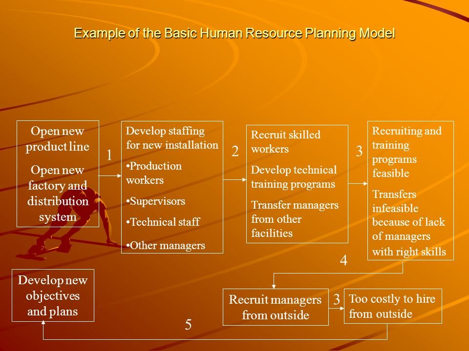 Example of the Basic Human Resource Planning Model