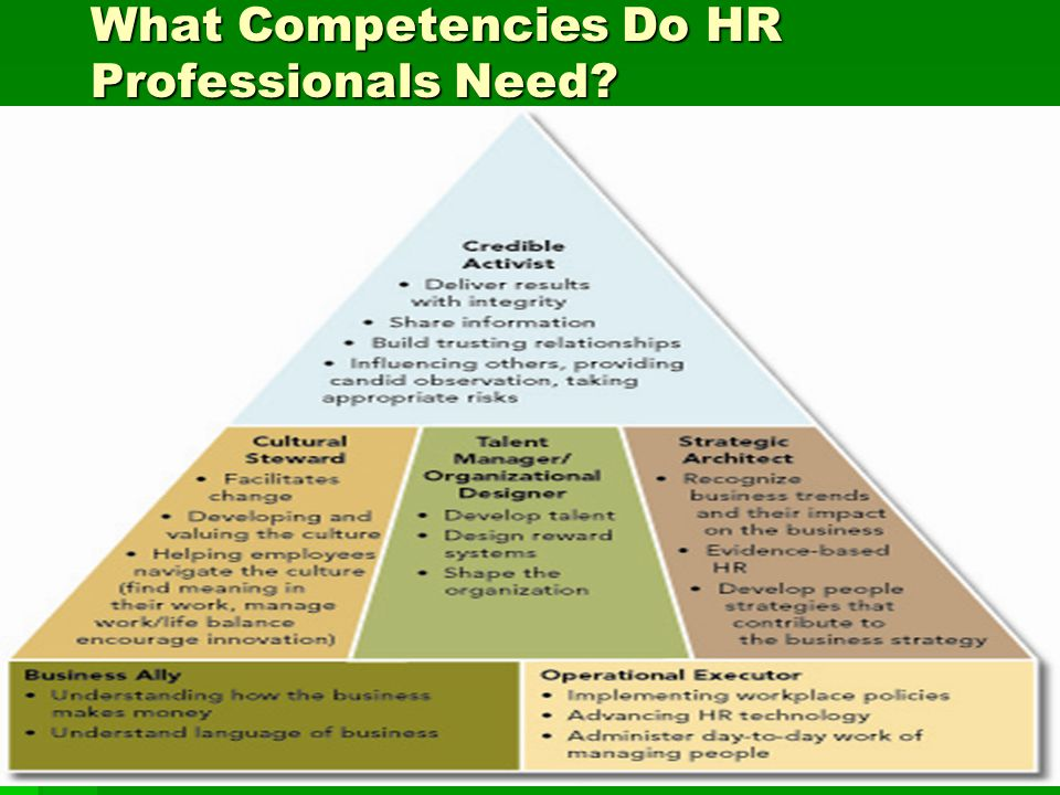 What Competencies Do HR Professionals Need