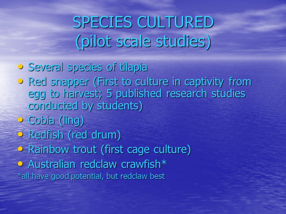 SPECIES CULTURED (pilot scale studies)