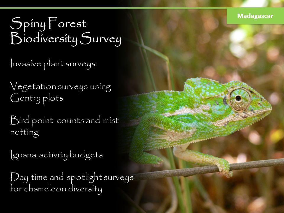 Spiny Forest Biodiversity Survey