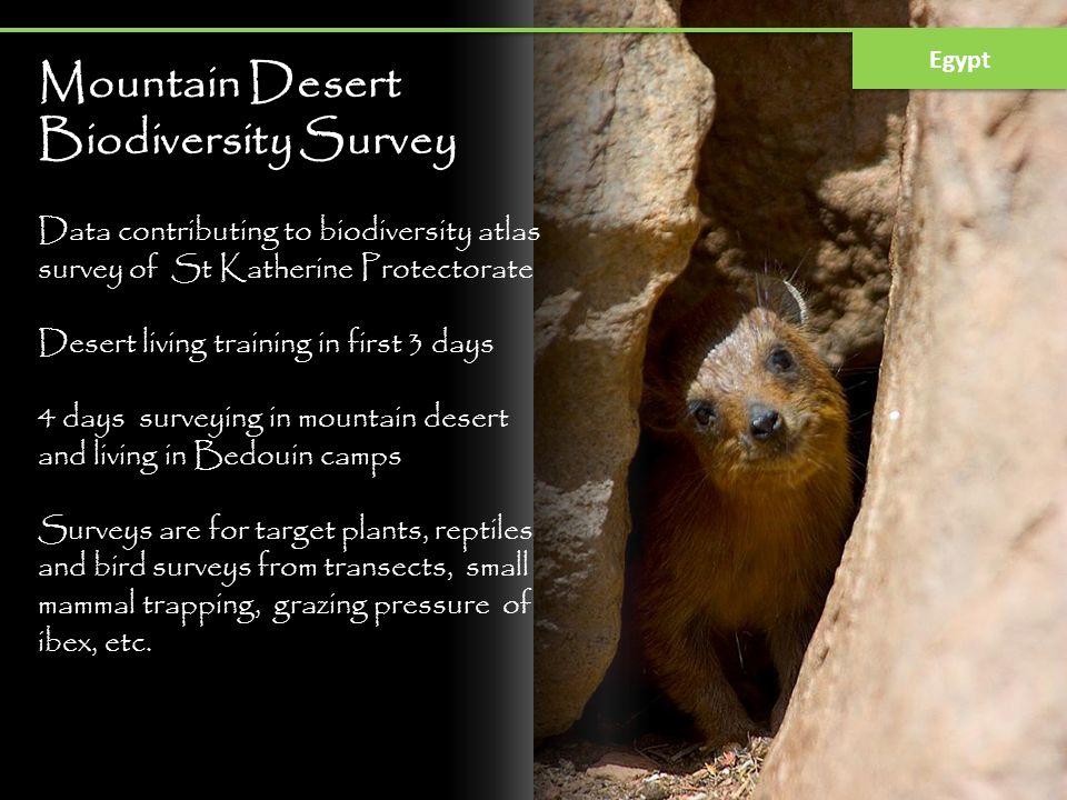 Mountain Desert Biodiversity Survey
