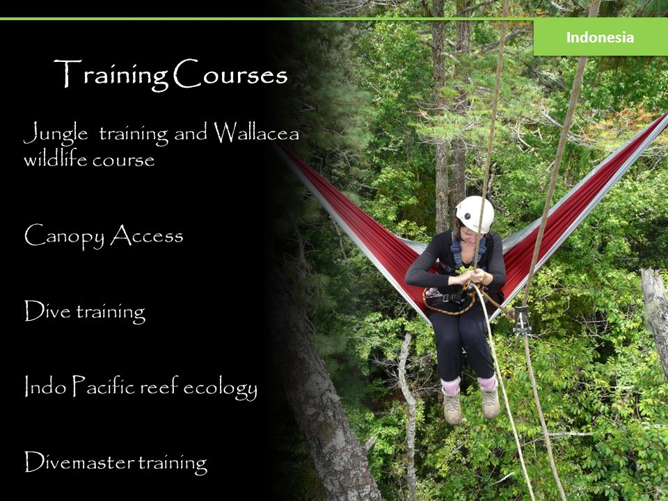 Training Courses Jungle training and Wallacea wildlife course