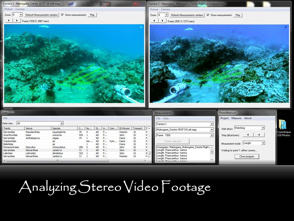 Analyzing Stereo Video Footage