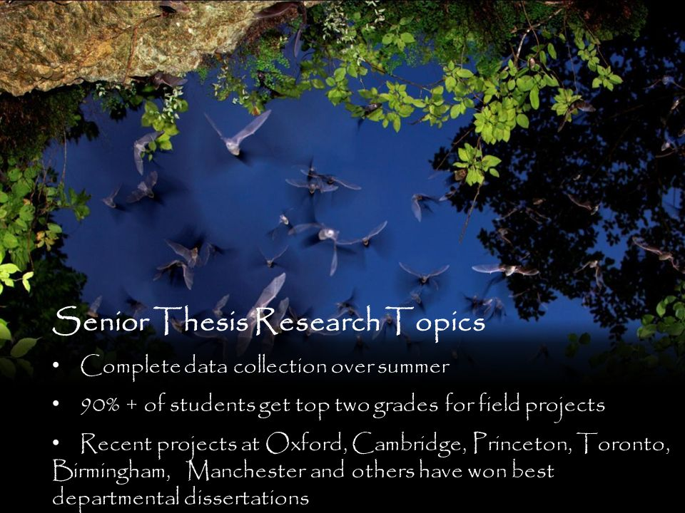 Senior Thesis Research Topics