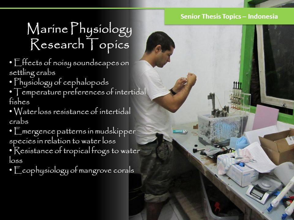 Marine Physiology Research Topics Senior Thesis Topics – Indonesia