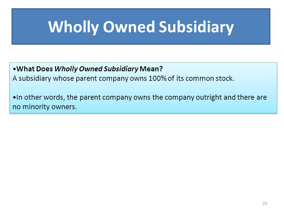 Wholly Owned Subsidiary