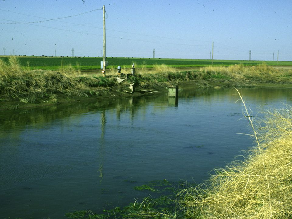 A tailwater pit is a storage pond to collect furrow runoff for reapplication.