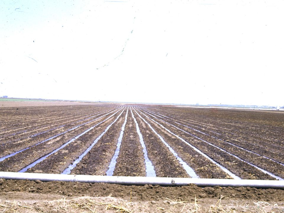 Most furrow irrigation in Oklahoma is supplied by ground water through gated pipes.