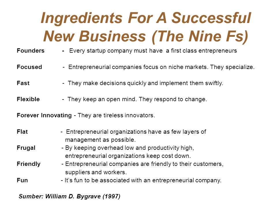Ingredients For A Successful New Business (The Nine Fs)