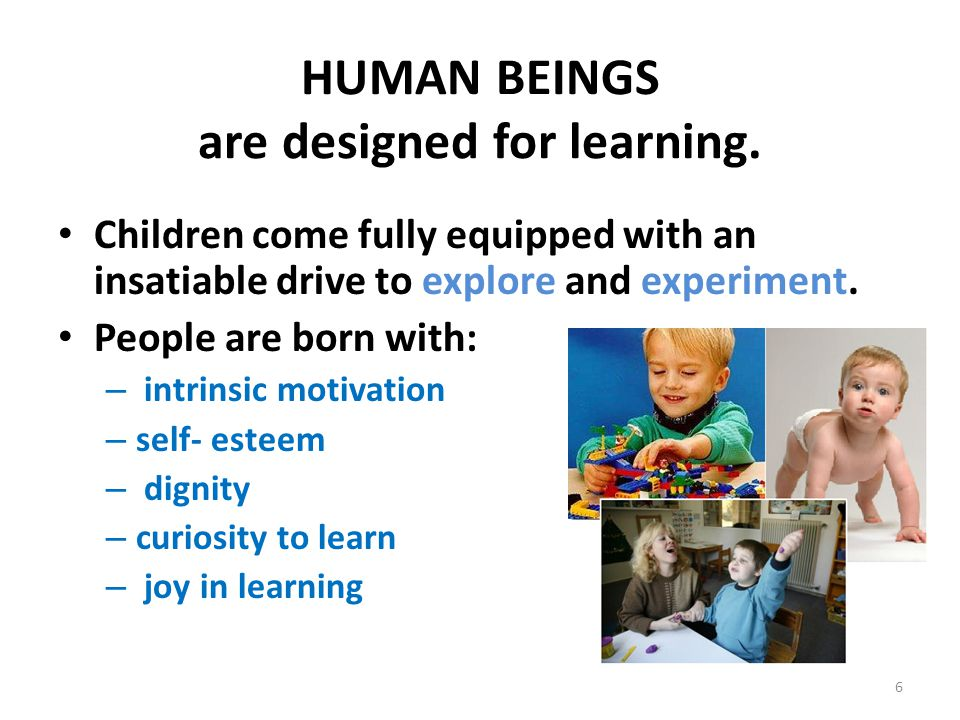 HUMAN BEINGS are designed for learning.