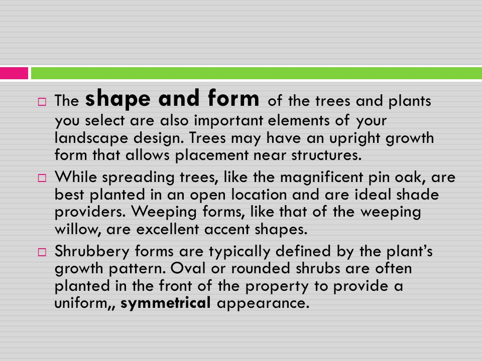 The shape and form of the trees and plants you select are also important elements of your landscape design. Trees may have an upright growth form that allows placement near structures.
