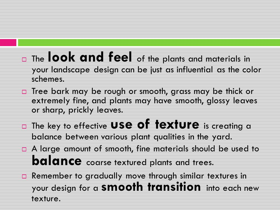 The look and feel of the plants and materials in your landscape design can be just as influential as the color schemes.