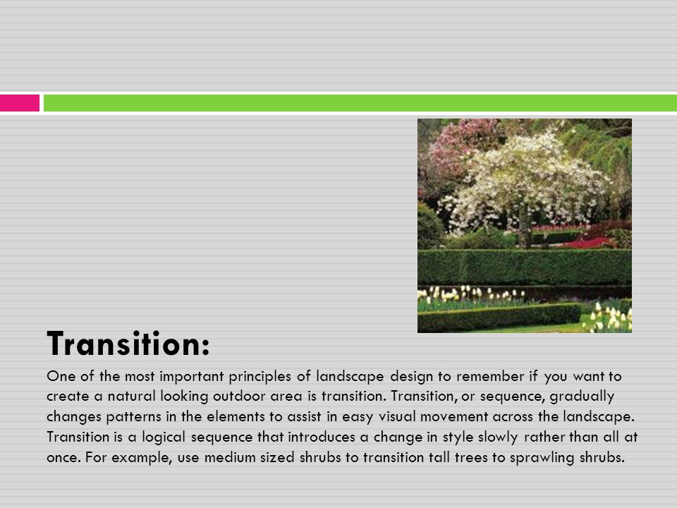 Transition: One of the most important principles of landscape design to remember if you want to create a natural looking outdoor area is transition.