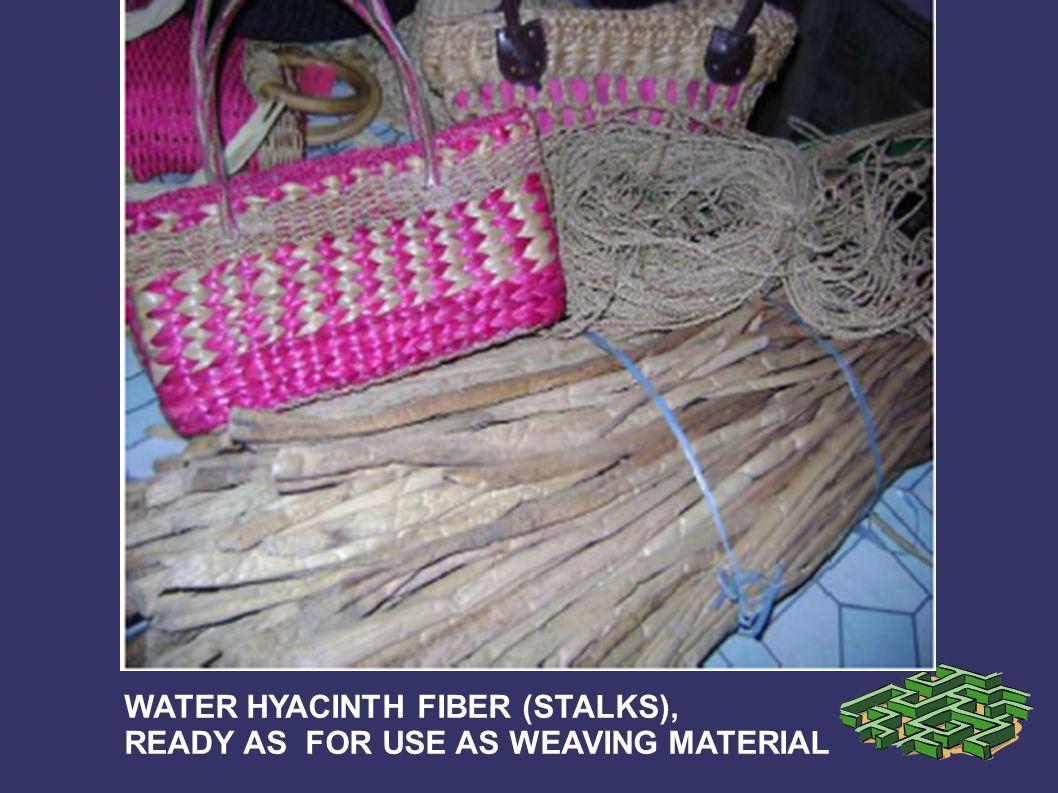 WATER HYACINTH FIBER (STALKS),