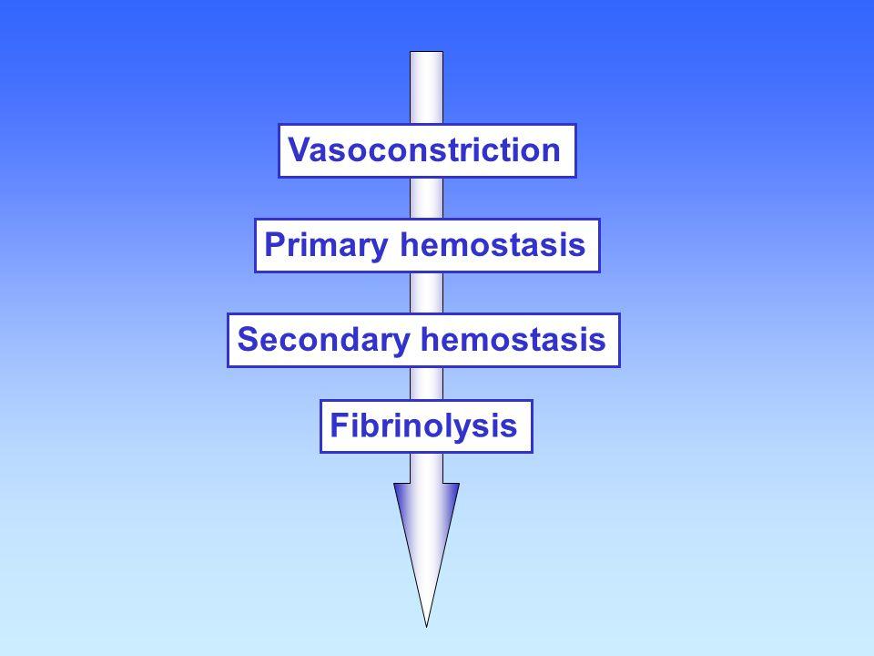 Vasoconstriction Primary hemostasis Secondary hemostasis Fibrinolysis