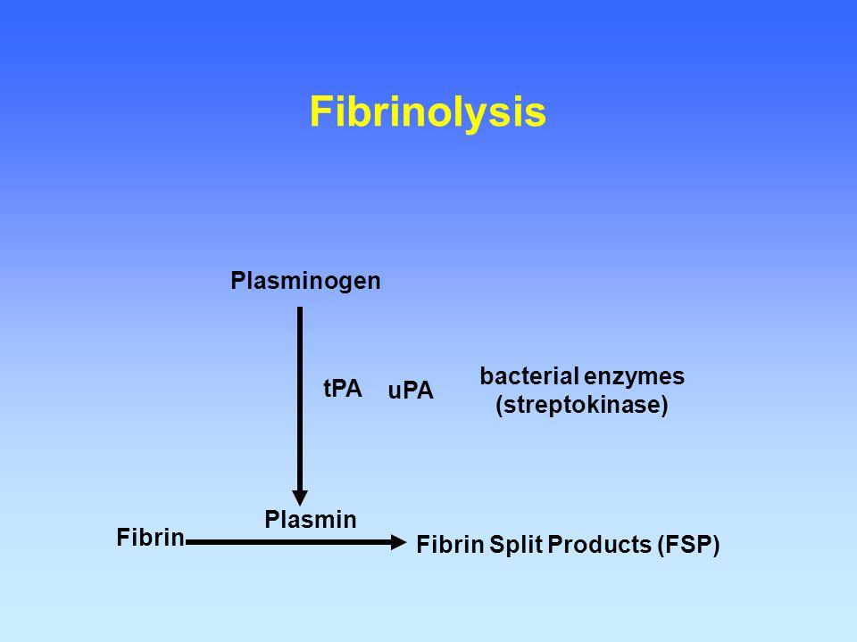 Fibrinolysis Plasminogen bacterial enzymes (streptokinase) tPA uPA