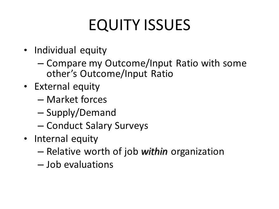 EQUITY ISSUES Individual equity