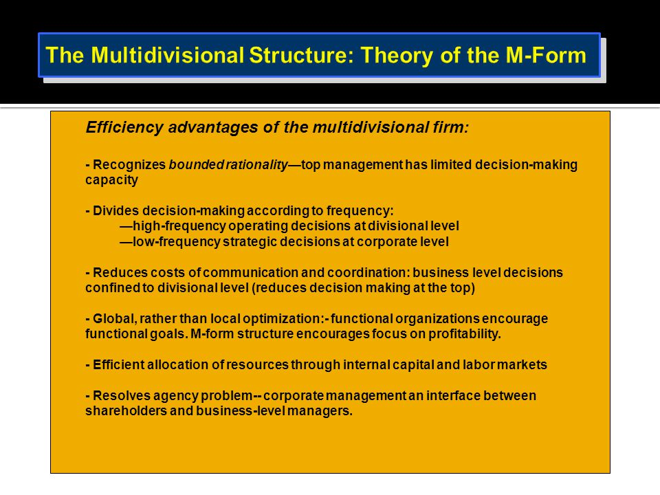 The Multidivisional Structure: Theory of the M-Form