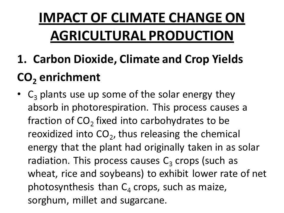 IMPACT OF CLIMATE CHANGE ON AGRICULTURAL PRODUCTION