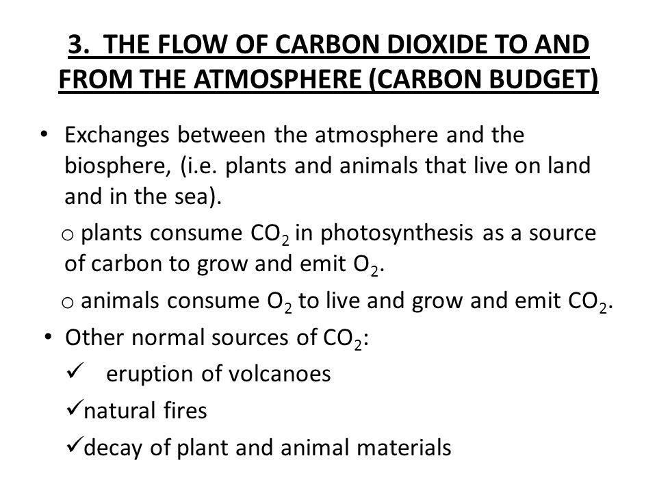 3. THE FLOW OF CARBON DIOXIDE TO AND FROM THE ATMOSPHERE (CARBON BUDGET)
