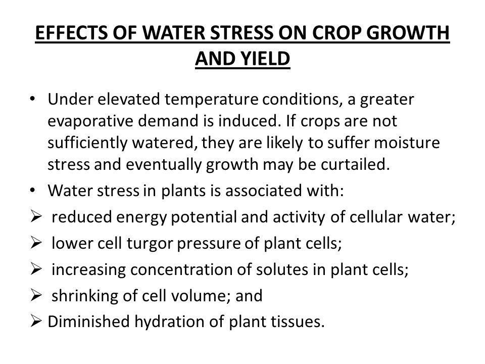 EFFECTS OF WATER STRESS ON CROP GROWTH AND YIELD