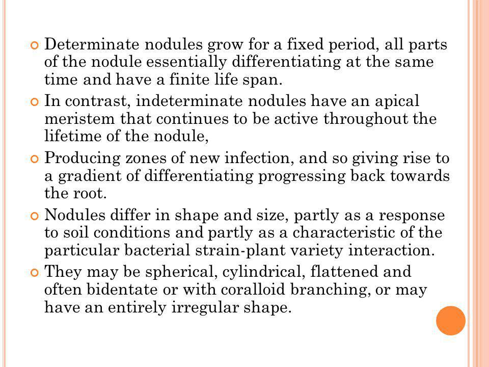 Determinate nodules grow for a fixed period, all parts of the nodule essentially differentiating at the same time and have a finite life span.