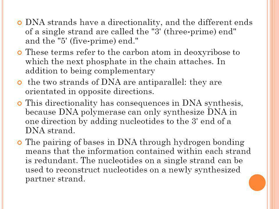 DNA strands have a directionality, and the different ends of a single strand are called the 3 (three-prime) end and the 5 (five-prime) end.