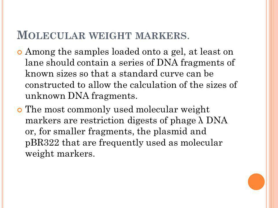 Molecular weight markers.