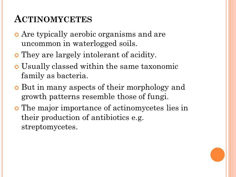 Actinomycetes Are typically aerobic organisms and are uncommon in waterlogged soils. They are largely intolerant of acidity.