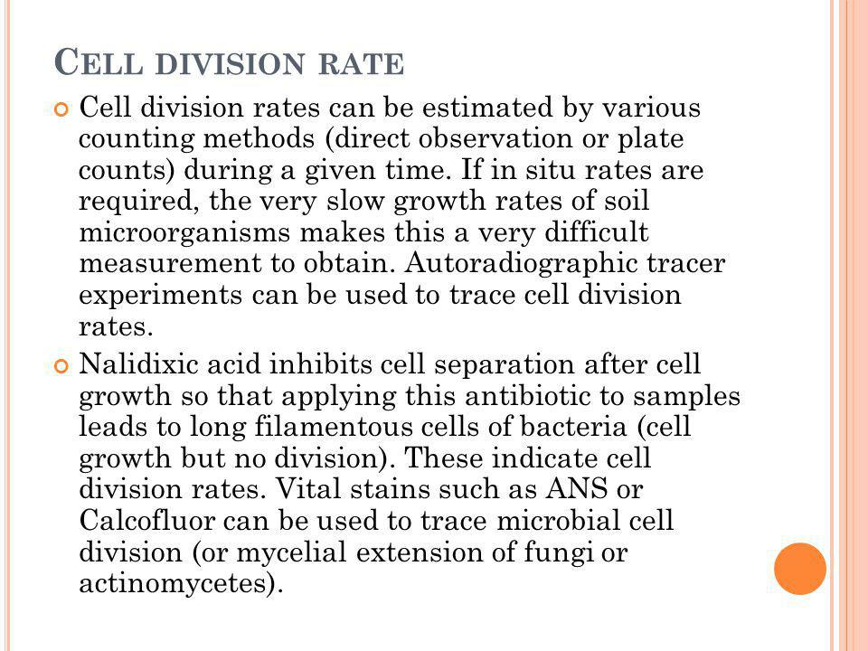 Cell division rate