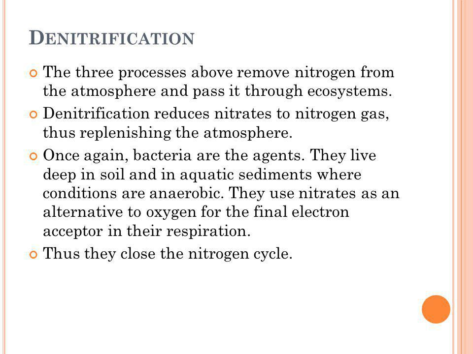 Denitrification The three processes above remove nitrogen from the atmosphere and pass it through ecosystems.