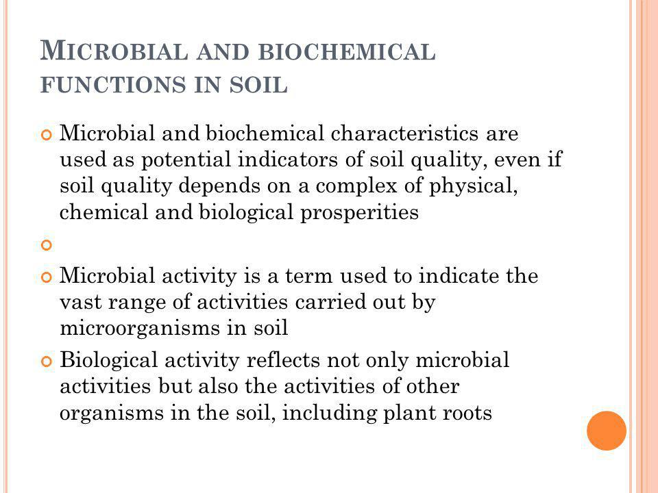 Microbial and biochemical functions in soil