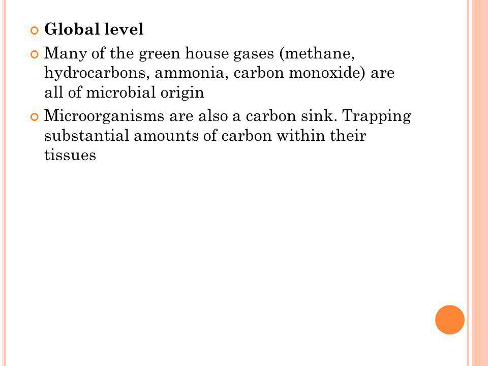 Global level Many of the green house gases (methane, hydrocarbons, ammonia, carbon monoxide) are all of microbial origin.