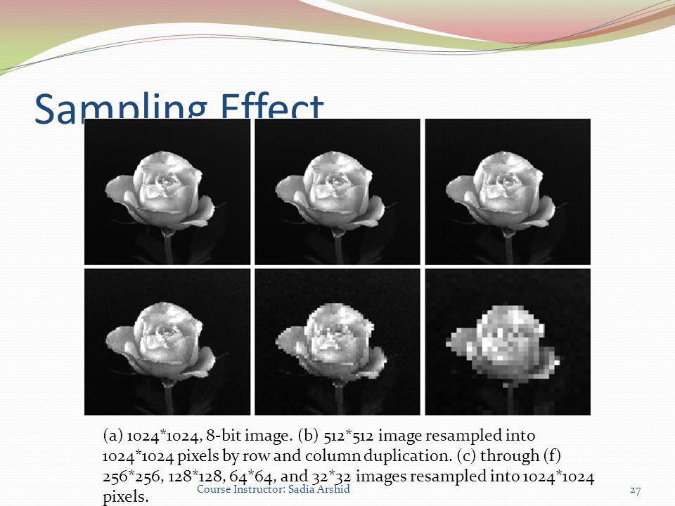 Sampling Effect
