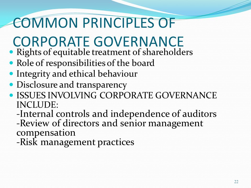 COMMON PRINCIPLES OF CORPORATE GOVERNANCE
