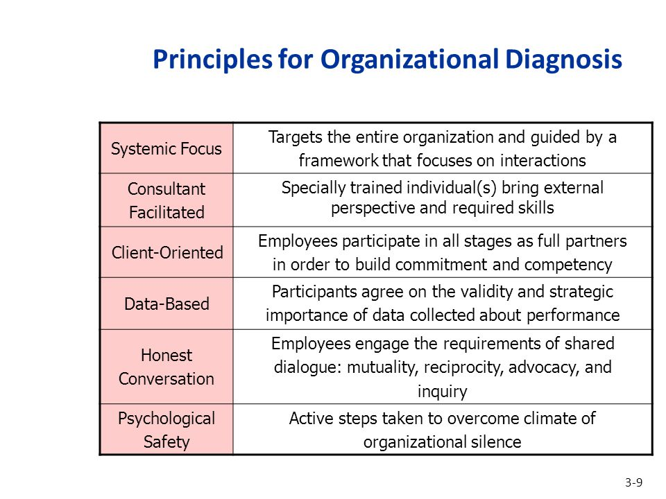 Principles for Organizational Diagnosis