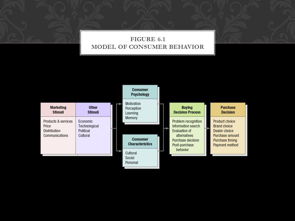 Figure 6.1 Model of Consumer Behavior