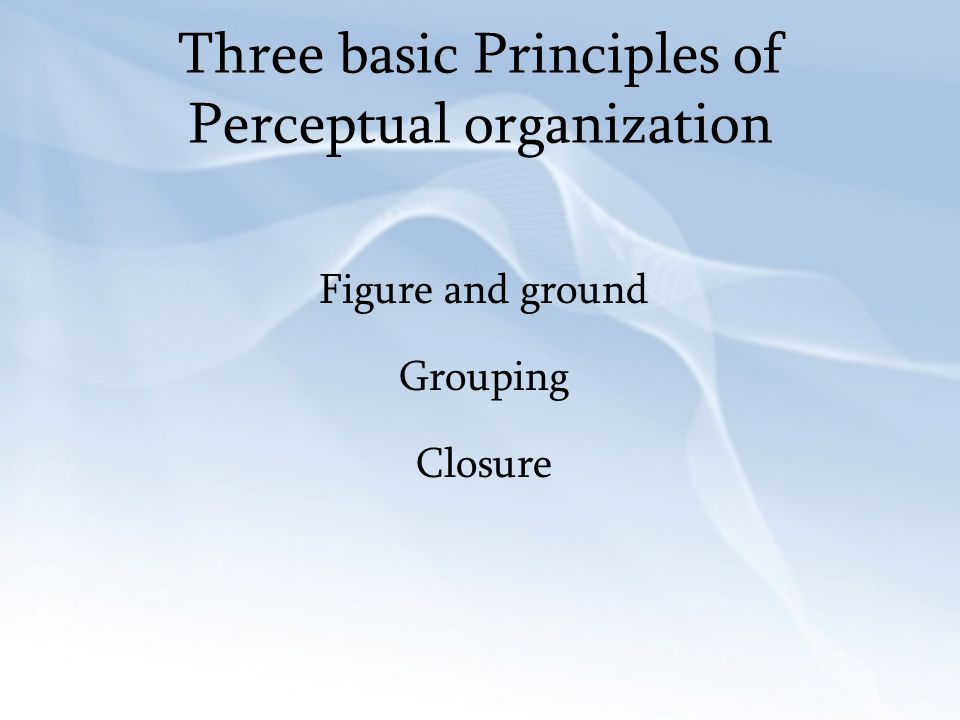 Three basic Principles of Perceptual organization