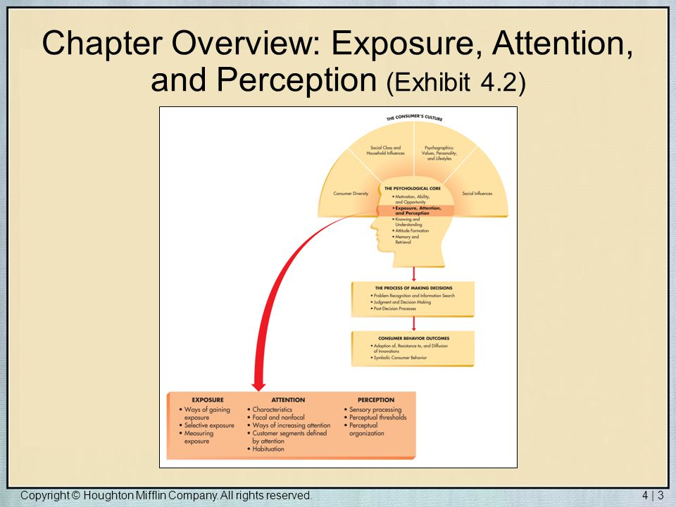 Chapter Overview: Exposure, Attention, and Perception (Exhibit 4.2)
