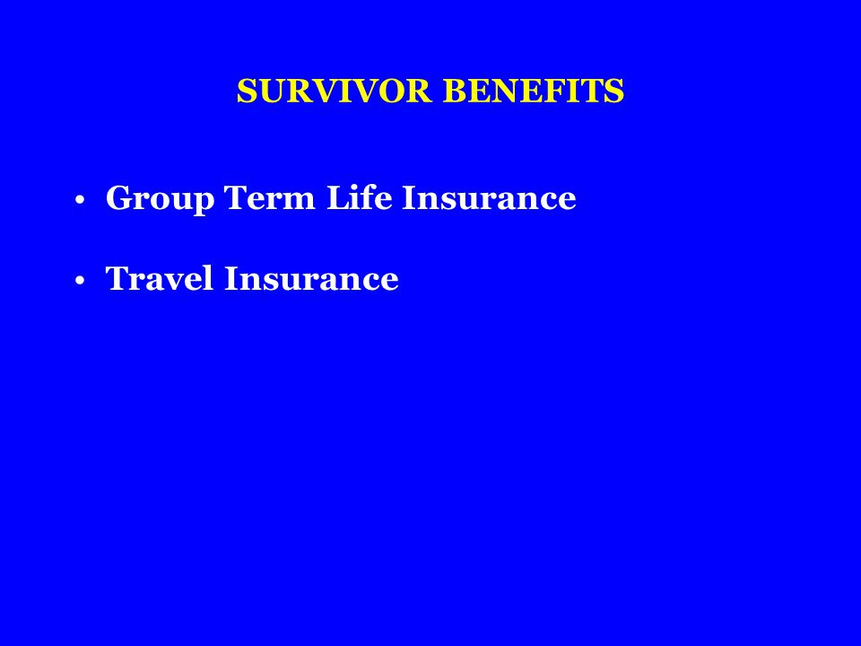 SURVIVOR BENEFITS Group Term Life Insurance Travel Insurance