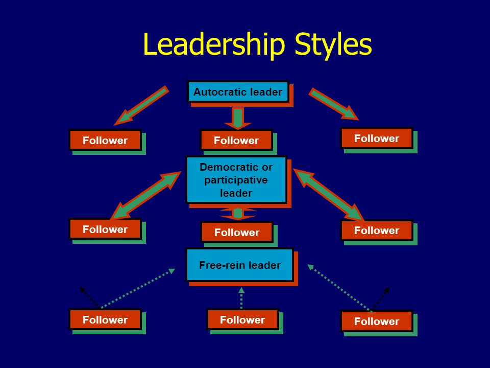 Democratic or participative leader