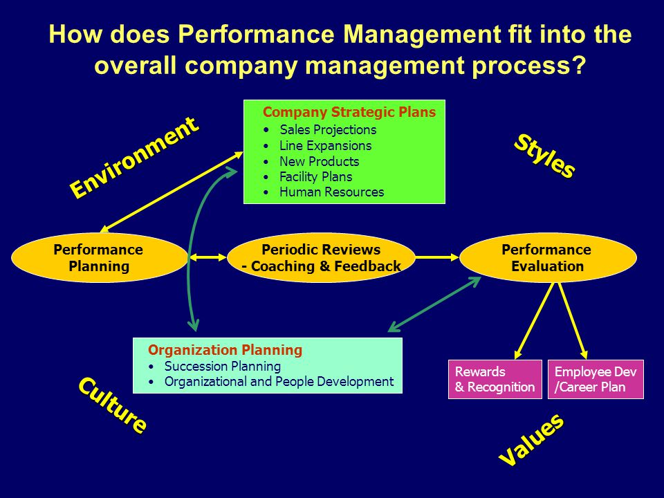 How does Performance Management fit into the overall company management process
