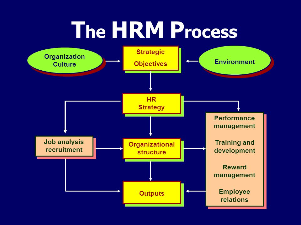 The HRM Process Strategic Organization Culture Environment Objectives