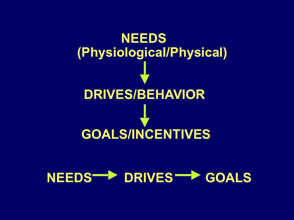 NEEDS (Physiological/Physical) DRIVES/BEHAVIOR GOALS/INCENTIVES DRIVES GOALS
