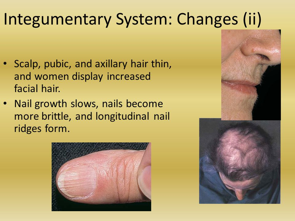 Integumentary System: Changes (ii)