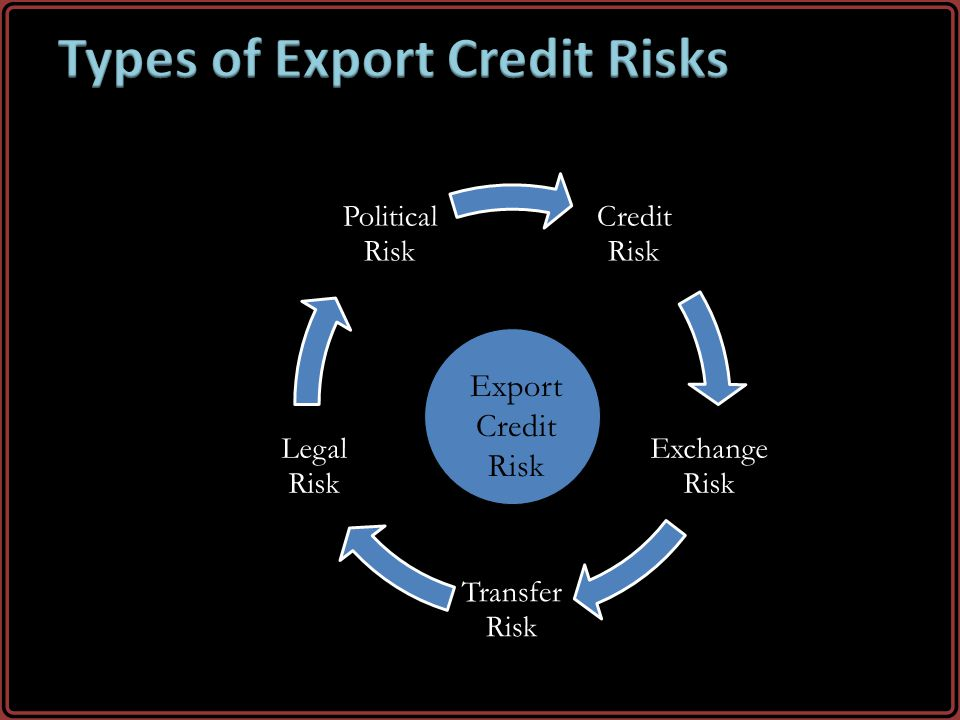 Types of Export Credit Risks