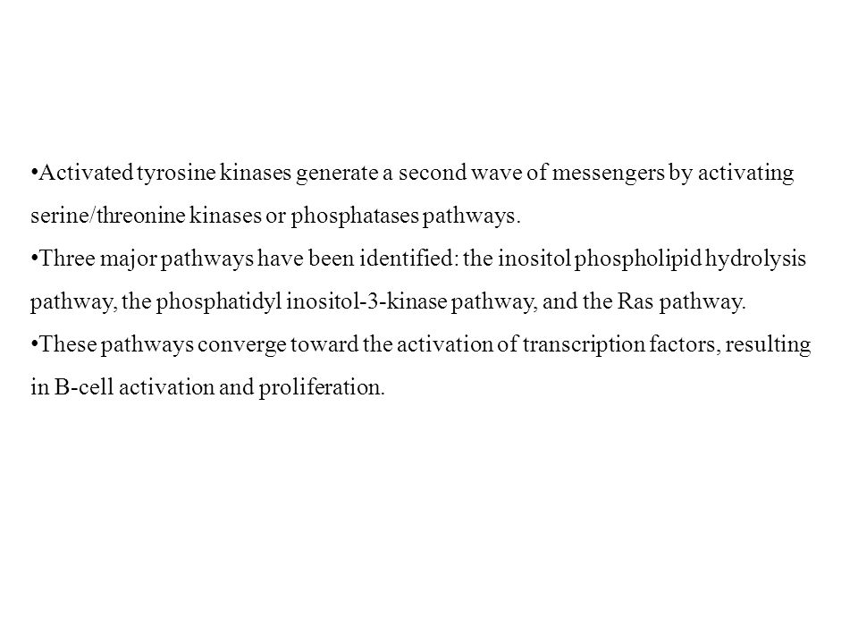 Activated tyrosine kinases generate a second wave of messengers by activating serine/threonine kinases or phosphatases pathways.