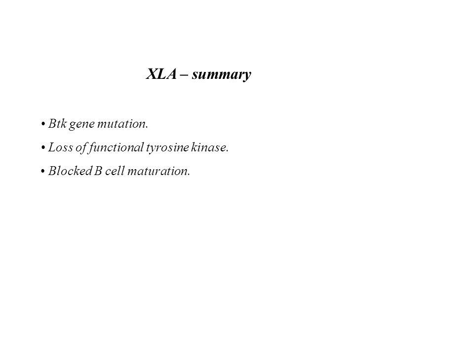 XLA – summary • Btk gene mutation.