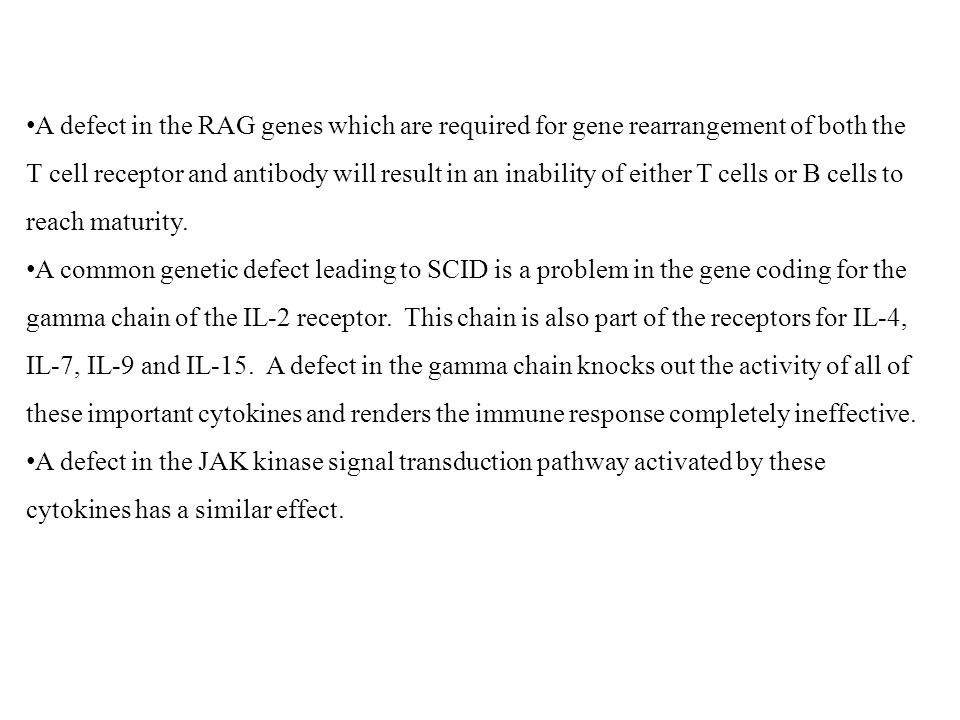 A defect in the RAG genes which are required for gene rearrangement of both the T cell receptor and antibody will result in an inability of either T cells or B cells to reach maturity.